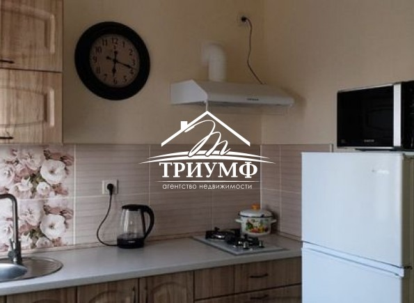 1-комнатная квартира с ремонтом на Ушакова
